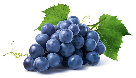 bunch of grapes, isolated on white