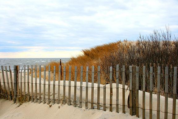 cape may beachfront