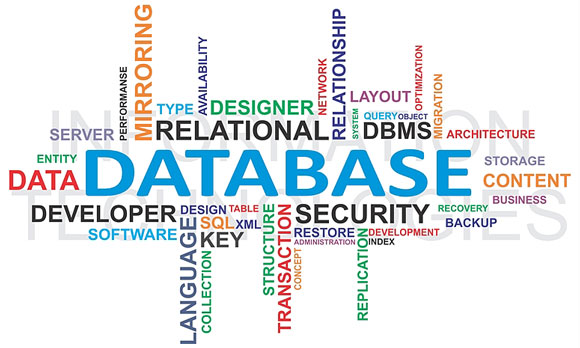database and related terms