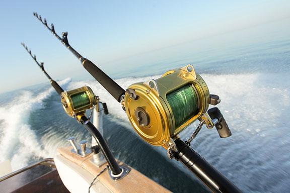 big game fishing rods