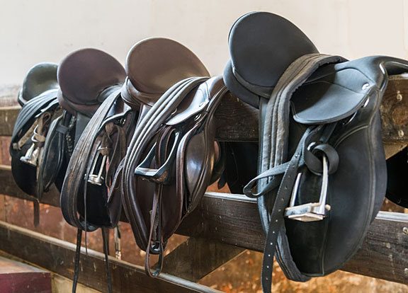 leather riding saddles on a fence rail