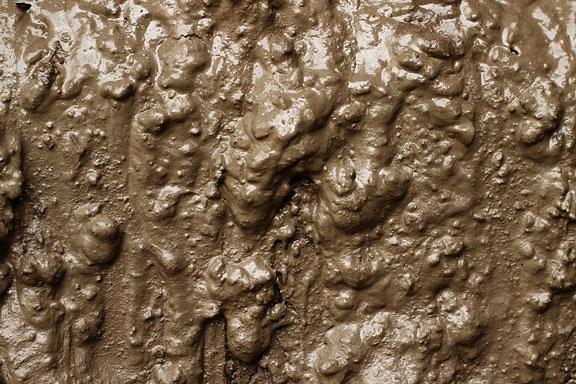 mucky mud
