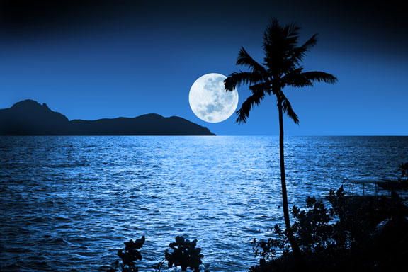 full moon rising at nighttime