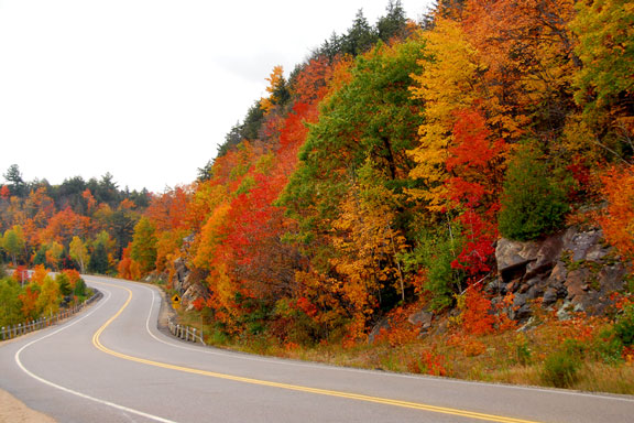 Autumn Colors in northern Ontario