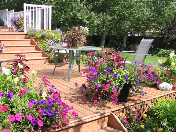 outdoor deck, patio, and landscape