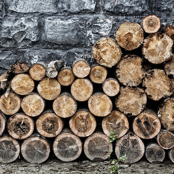 woodpile stacked against a wall