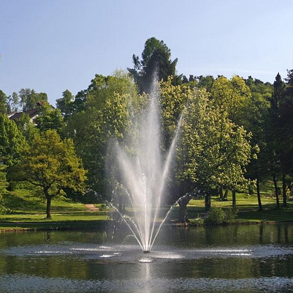 fountain in a garden pond