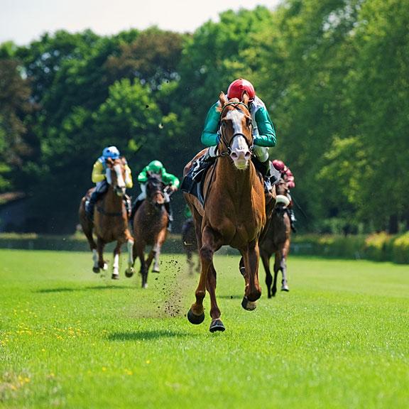 horses racing toward the finish line