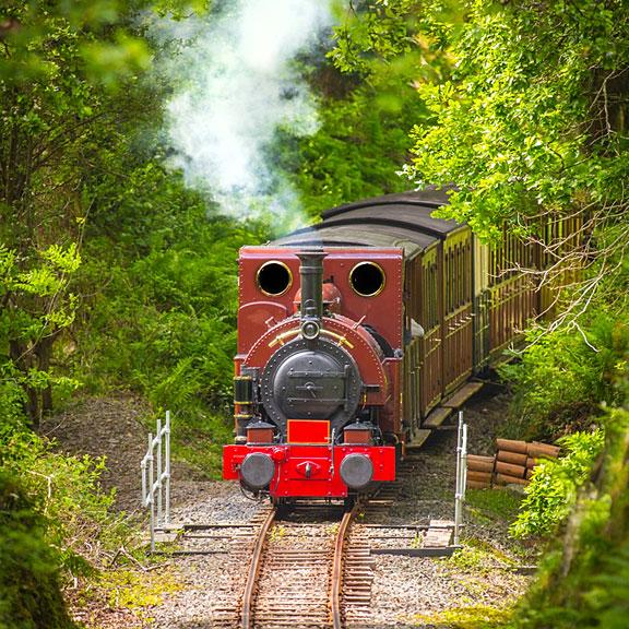 steam engine crossing a little bridge