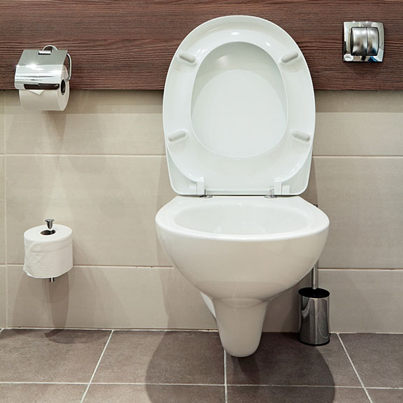 bathroom toilet fixture and accessories