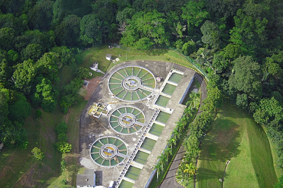 water treatment plant surrounded by trees