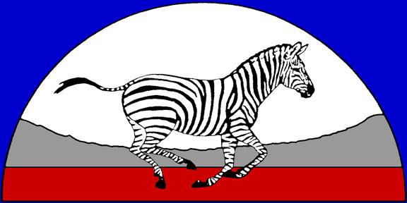 zeducorp logo on a blue background